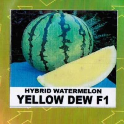 Shop online for Hybrid Watermelon (Yellow Dew F1) vegetable seeds. Delivers in the Philippines. Adding greenery made easy!