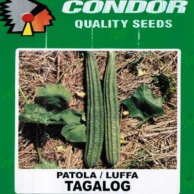 Shop online for Patola/Luffa Tagalog vegetable seeds. Delivers in the Philippines.  Adding greenery made easy!