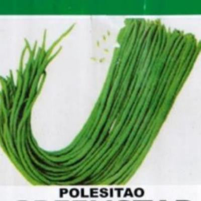 Shop online for Sitao vegetable seeds. Delivers in the Philippines. Adding greenery made easy