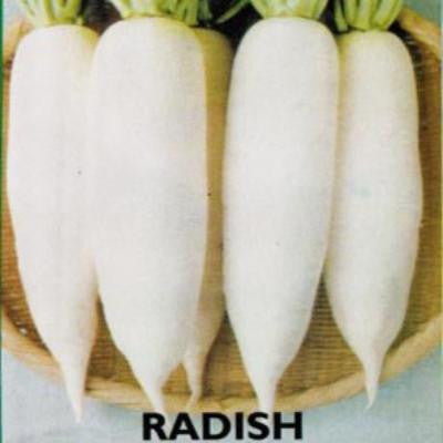 Shop online for Radish (Nagcarlan 45) vegetable seeds. Delivers in the Philippines. Adding greenery made easy