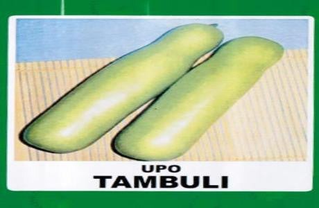 Shop online for Upo vegetable seeds. Delivers in the Philippines. Adding greenery made easy!