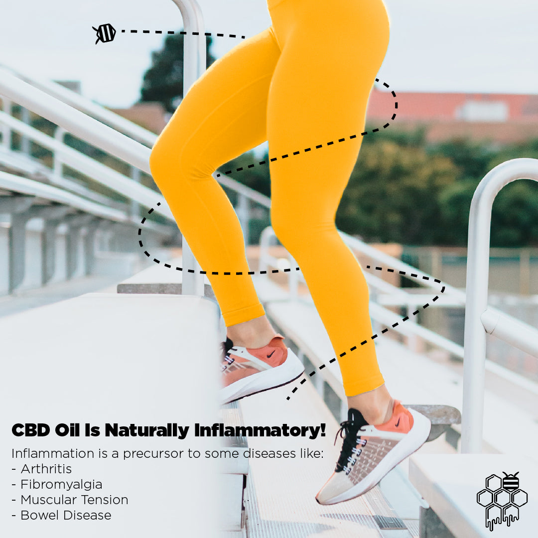Hemp-Based CBD to Enhance Your Workout and Improve Your Recovery