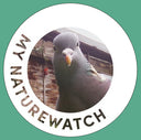 A product image of My Naturewatch Standard Camera
