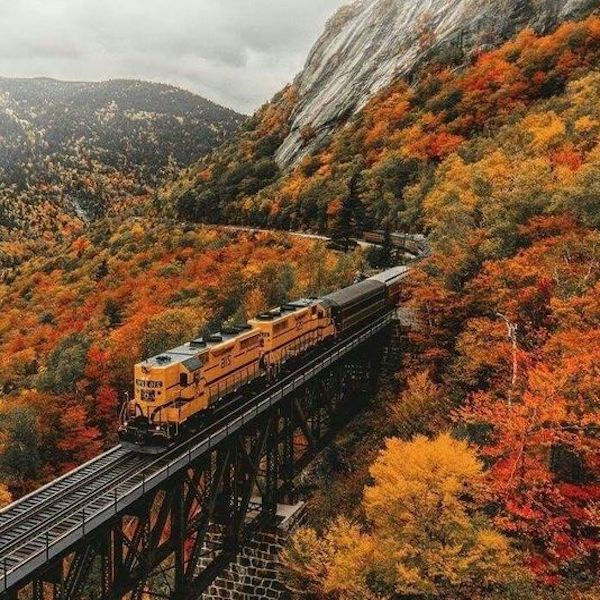 Autumn Train Journey