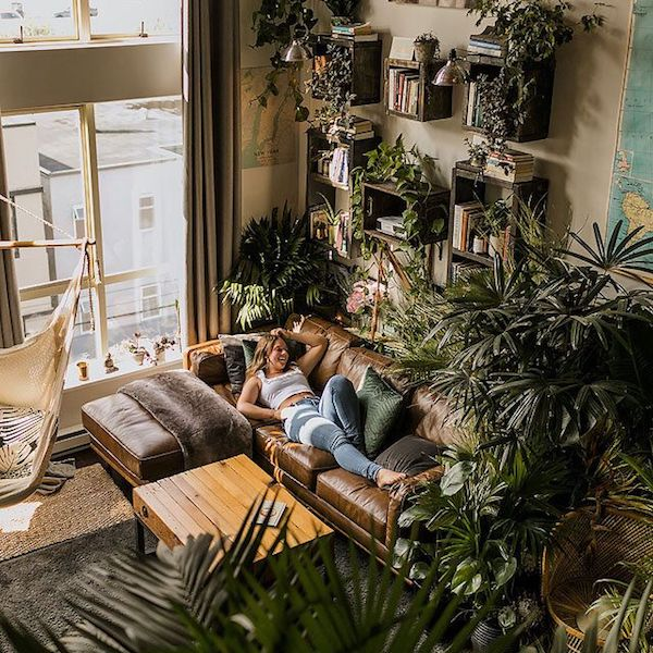 FOCUS ON  HOUSE PLANTS | DYKE & DEAN