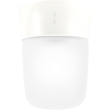 DUROPLAST CREAM REAR WIRED WALL & CEILING LIGHT FROSTED