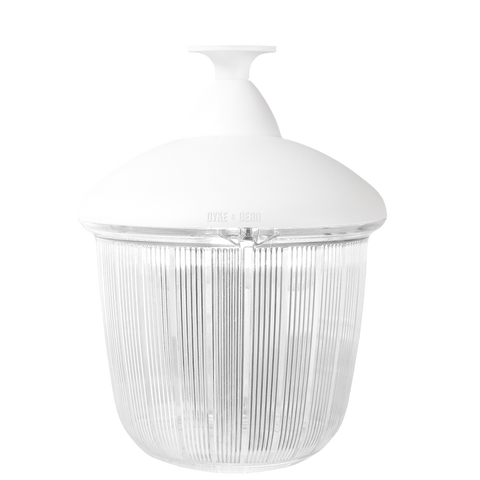 CAST LANTERN WHITE RIBBED CASE FIXED - BATHROOM / OUTDOOR LIGHTS - DYKE & DEAN  - Homewares | Lighting | Modern Home Furnishings