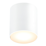 WHITE FIXED CYLINDER LIGHT IP54