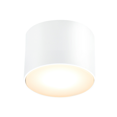 WHITE FIXED CYLINDER LIGHT SMALL IP54