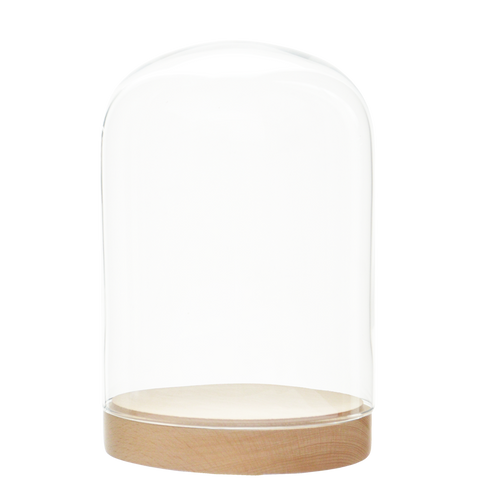 PLEASURE DOME BELL JAR MEDIUM