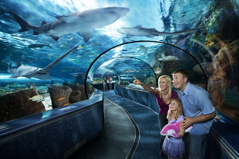 Ripley's Aquarium Tickets - Captain's Quarters Exclusive Guest Offer