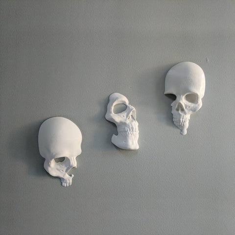 Image of 3pcs/set Skull Wall Art Decor TH10 - 1st Iceland