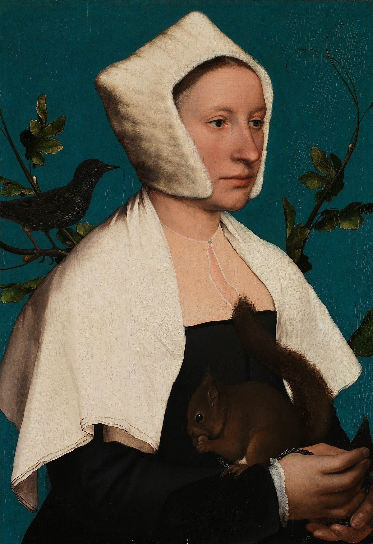 Portrait of a Lady with a Squirrel and a Starling (1527-28). Artist: Hans Holbein the Younger Home & Garden > Decor > Artwork > Posters, Prints, & Visual Artwork ArtToyourlife