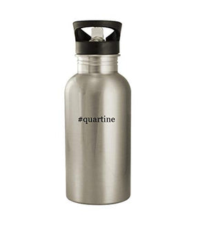 #quartine - 20oz Stainless Steel Water Bottle, Silver - His Perfect Gifts