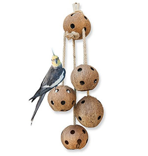 Pet Magasin Hand Made Bird Toys - Interactive Large Coconut Shell for Birds of All Kinds - His Perfect Gifts