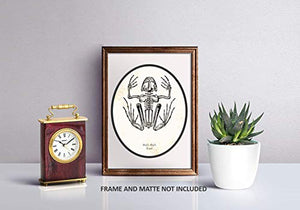 Ramini Brands Bufo Bufo Toad Animal Skeleton Vintage Drawing - Living Room, Office, Bedroom Decor - Cabin Artwork - 11 x 14 Unframed Print - Great Gift for Reptile Lovers, Zoologists, Biologists - His Perfect Gifts