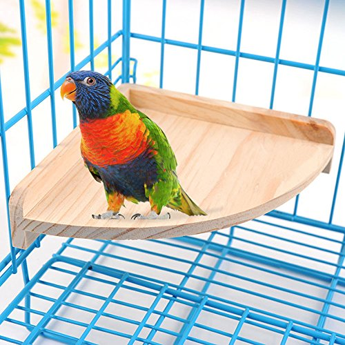 Mrli Pet Bird Perch Platform Stand Wood for Small Animals Parrot Parakeet Conure Cockatiel Budgie Gerbil Rat Mouse Chinchilla Hamster Cage Accessories Exercise Toys Sector - His Perfect Gifts