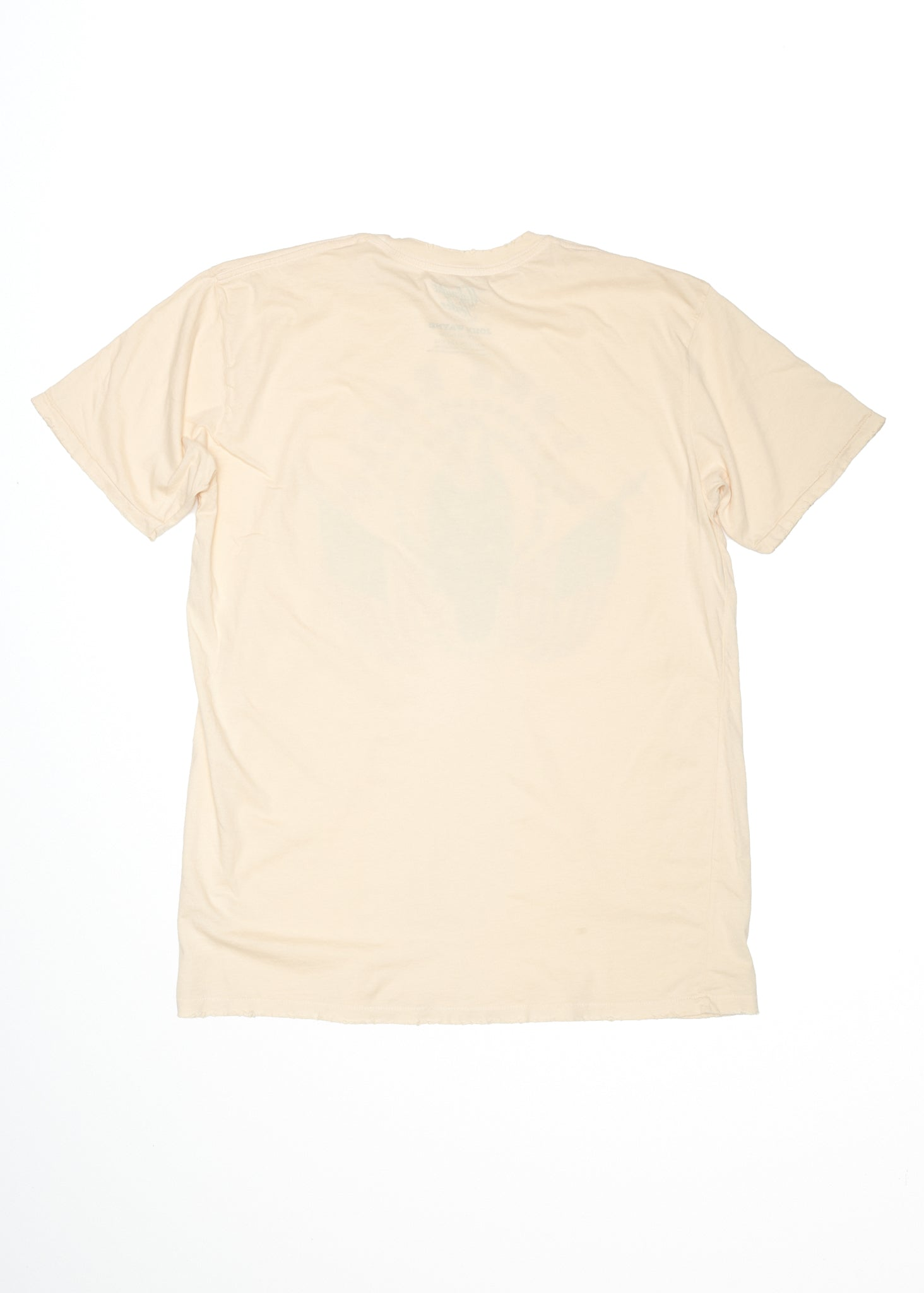 Lone Eagle Men's Crew - Summer Melon