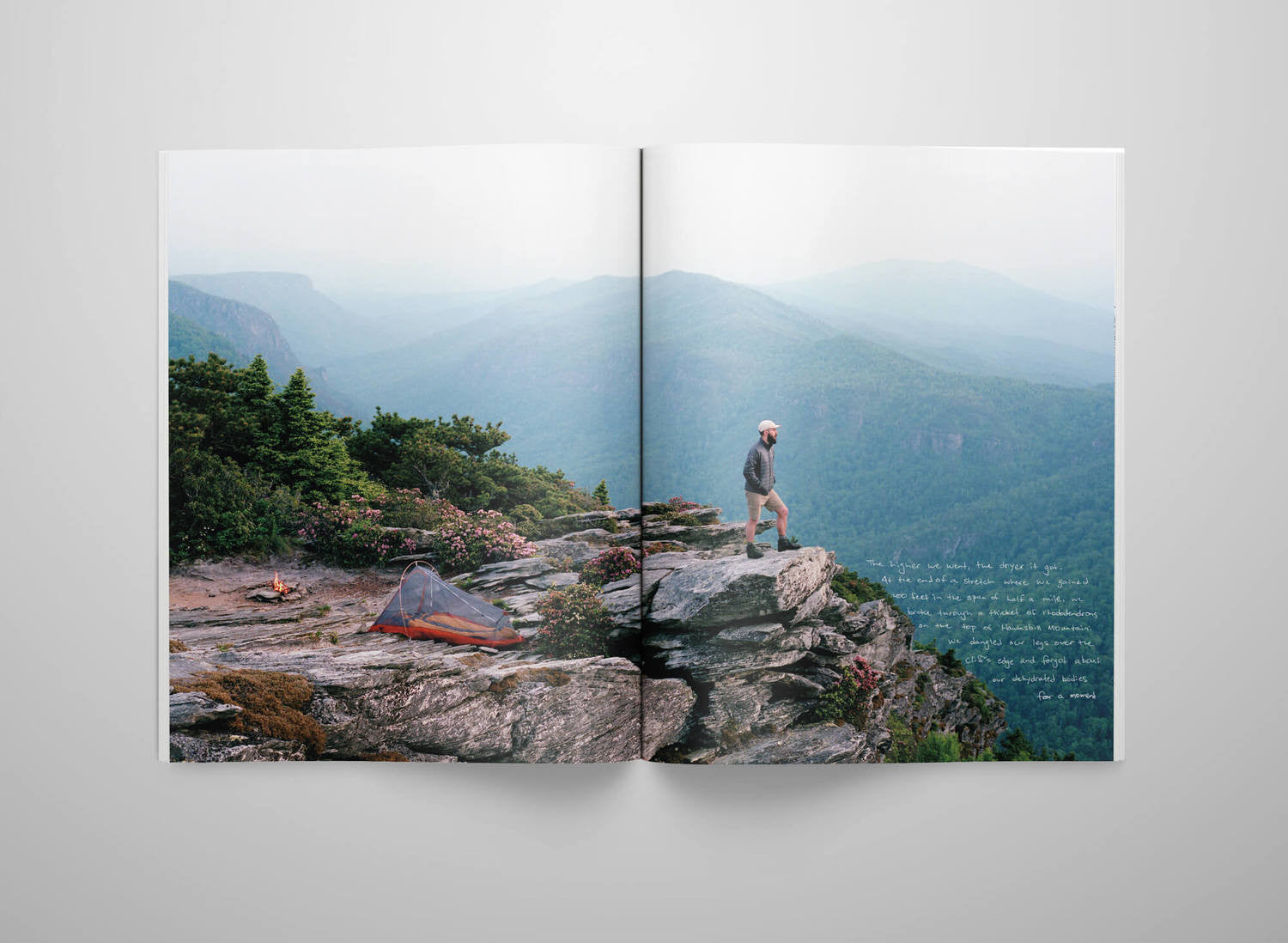 Collective Quarterly Issue 4: Pisgah