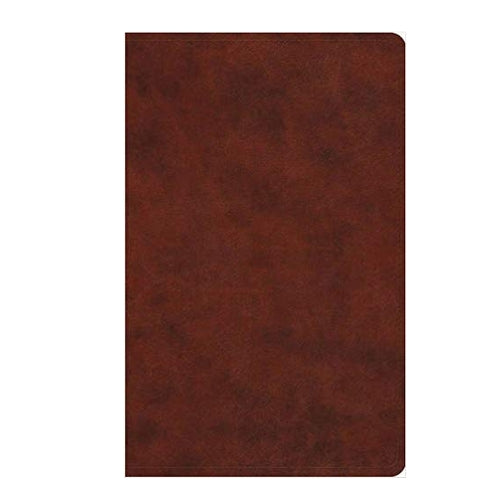 ESV Large Print Value Thinline TruTone Leather Chestnut