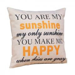 Pillow:You are my Sunshine