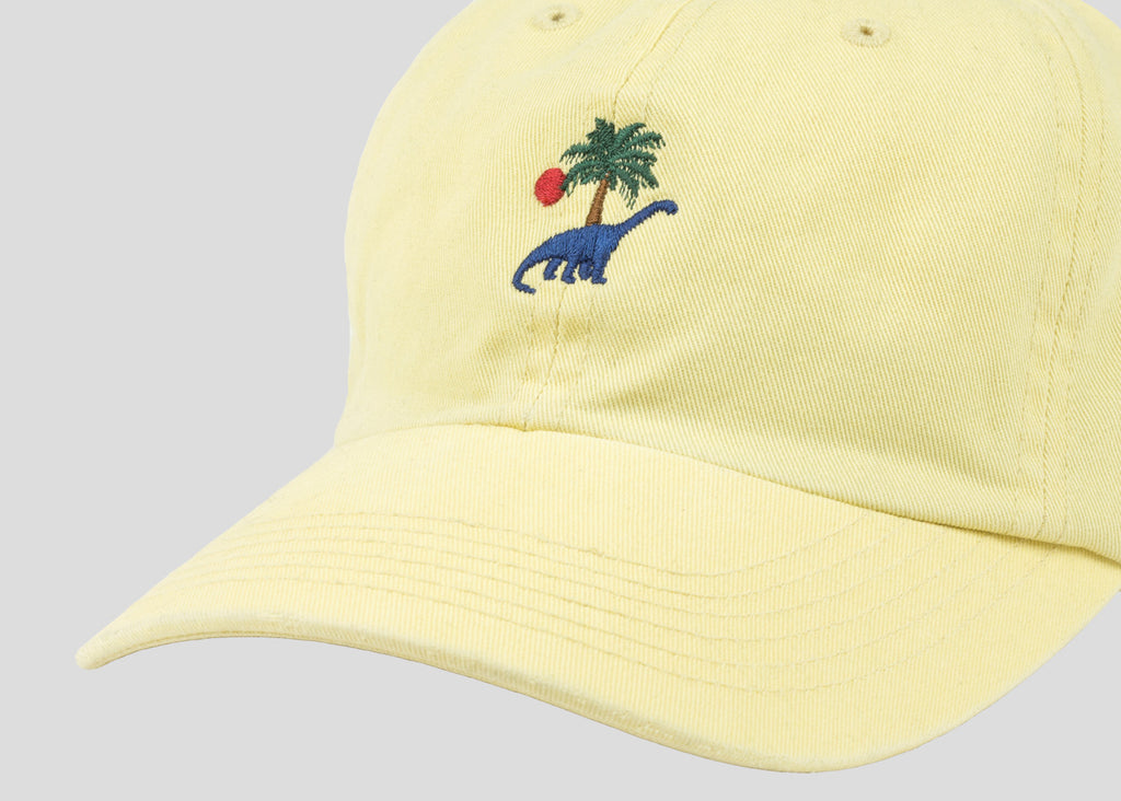 Prehistoric Washed Cap - Maize