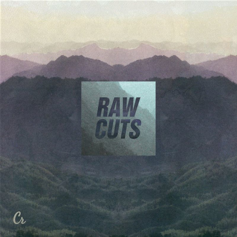 Various - Raw Cuts [Vinyl Record / LP]-Chillhop Records-Dig Around Records