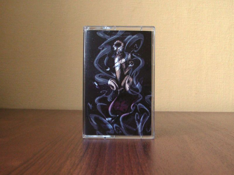 Flitz&Suppe - The Gradual Immersion [Cassette Tape]-Dirty Beauty-Dig Around Records