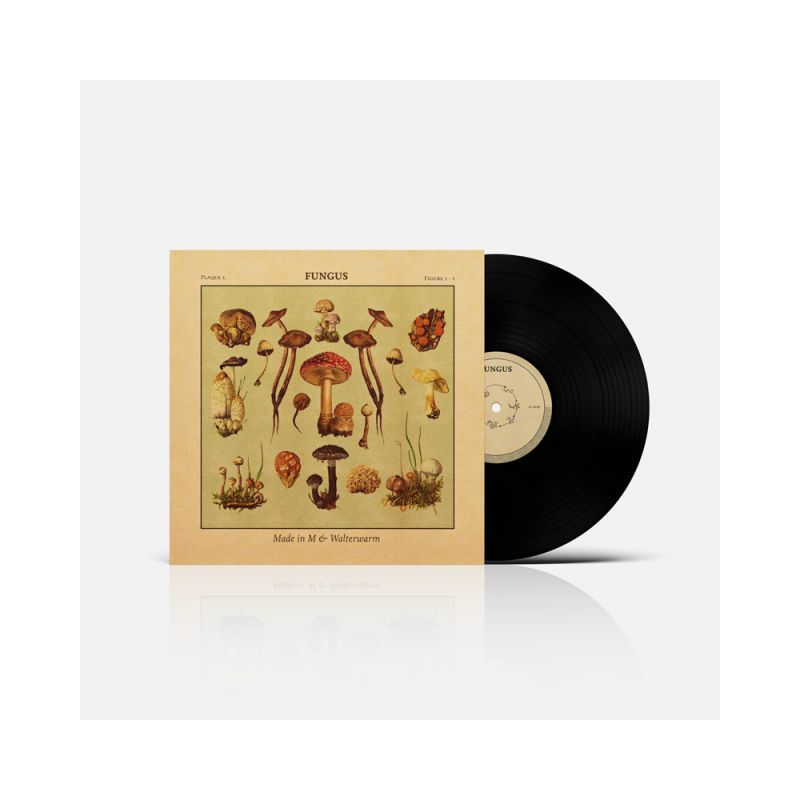 MADE IN M & WALTERWARM - FUNGUS [Vinyl Record / LP + Download Code + Sticker]-Guayaba Records-Dig Around Records