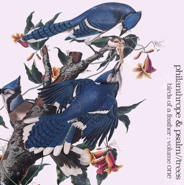 Philanthrope X Psalm Trees - Birds of a Feather: Volume One [Vinyl Record / LP] - Dig Around Records