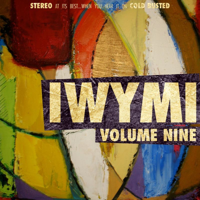 Various Artists - IWYMI Volume Nine [Cassette Tape]-Cold Busted Records-Dig Around Records
