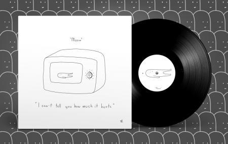 moow - I can't tell you how much it hurts [Vinyl Record / LP]-Vinyl Digital-Dig Around Records