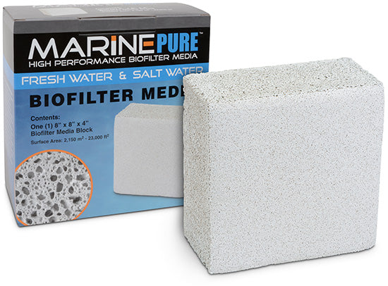 Marine Pure Block 8 x 8 x 4 (store use)