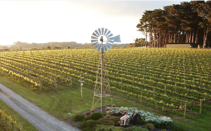 2017 Ten Minutes by Tractor 'Up The Hill Pinot Noir'
