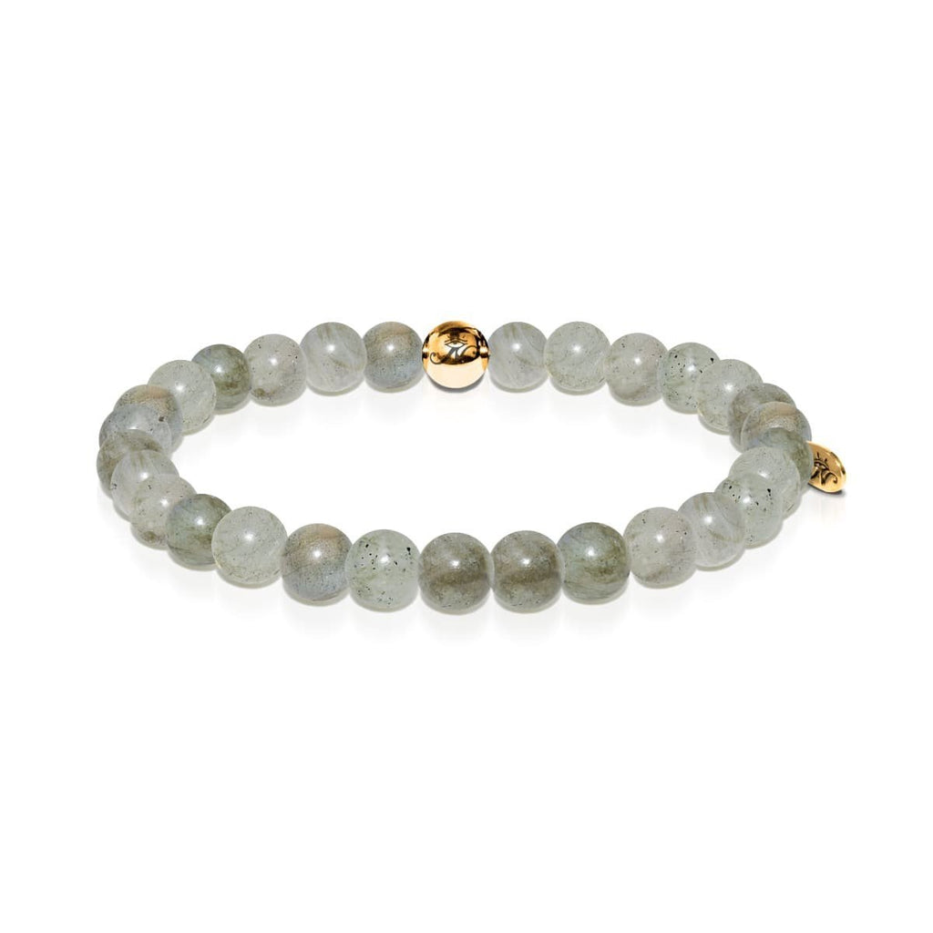 Insight | Gold Essence Spectrolite Bracelet