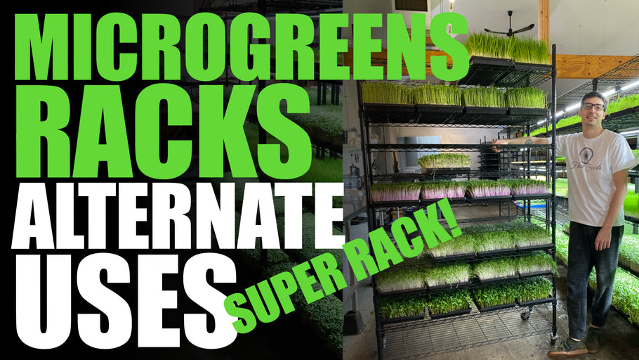 Other Uses For Your Microgreen Rack (Super Rack + Germination Rack)