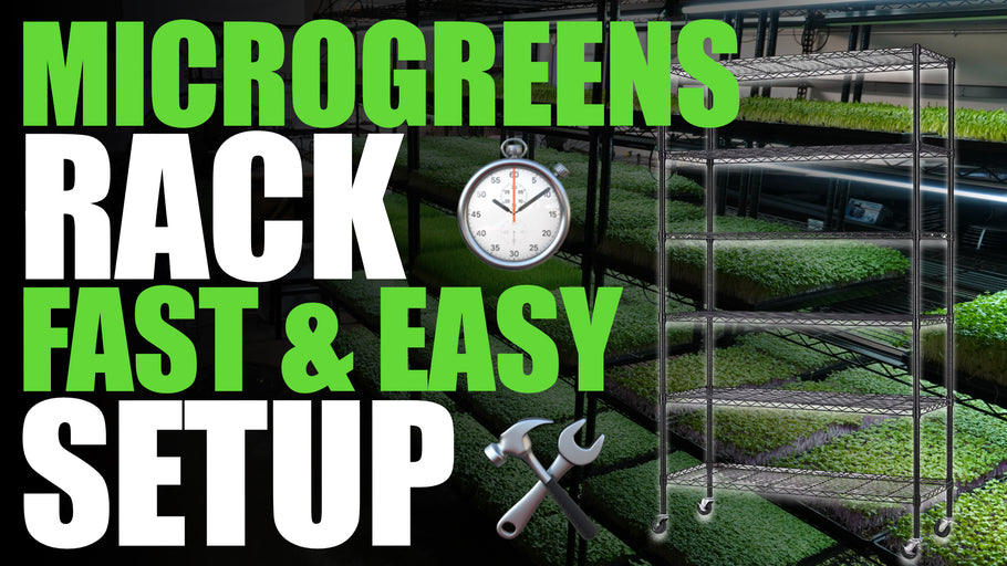 How To Build A Microgreen Rack FAST and EASY