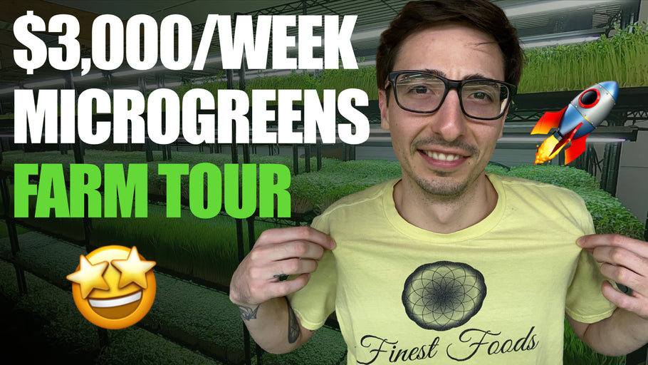 Microgreens FARM TOUR With Donny Greens (Full Walkthrough)