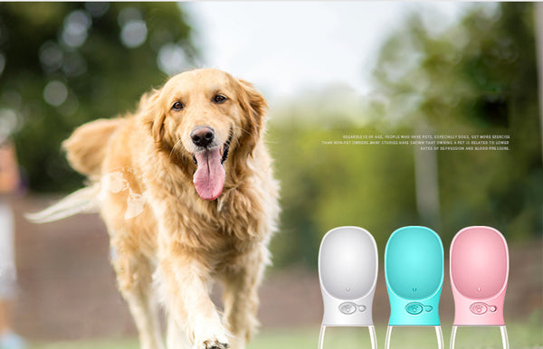 Portable Outdoor Pet Dog Drinker | Water Dispenser | Pet Drinking Cup