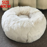 Cute Pet Hanging Beds | Pet Bed | Great cat households |Pet Accessories