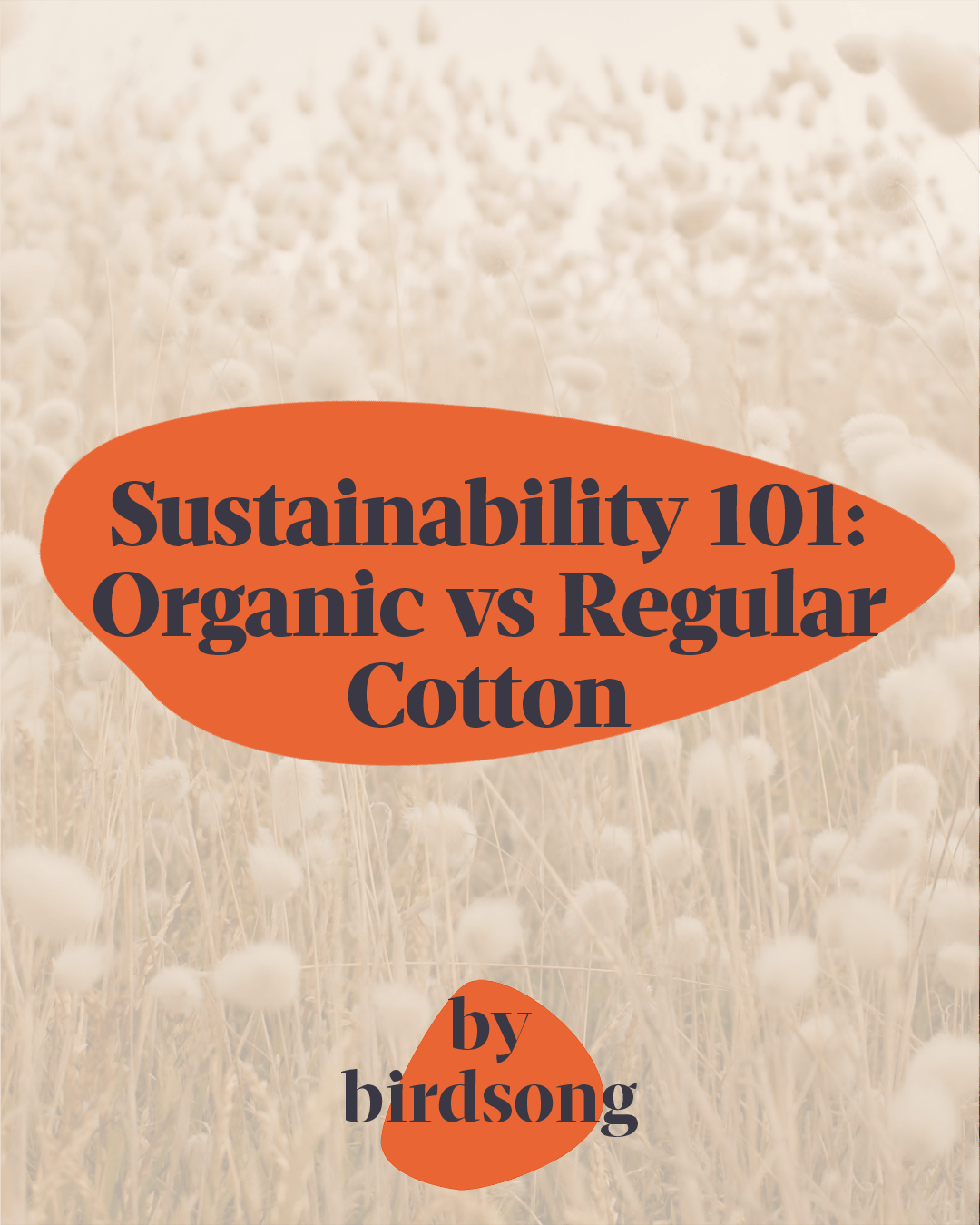 Sustainability 101: Organic vs Regular Cotton