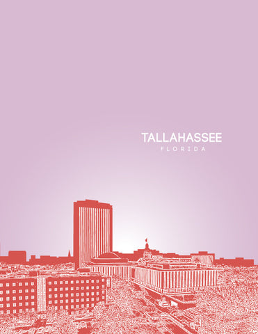 Tallahassee Skyline Poster