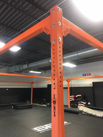 Custom Kickboxing Rig