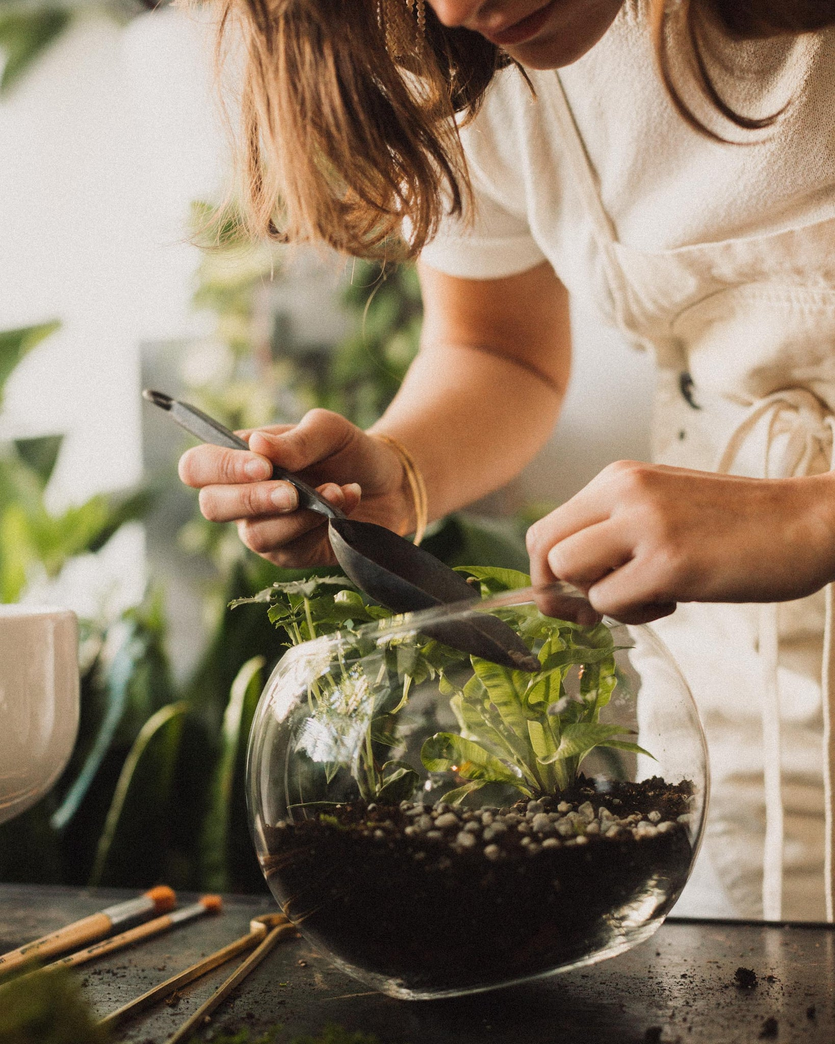 Terrarium Workshop, Plants and Glass