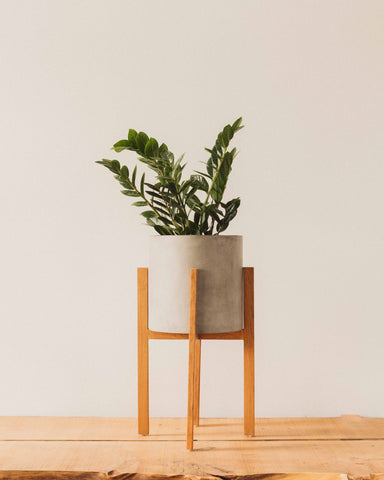 Berlin Pot with Wood Stand