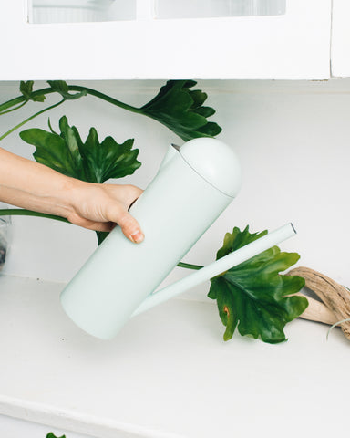 Umbra Studio Pitcher & Watering Can