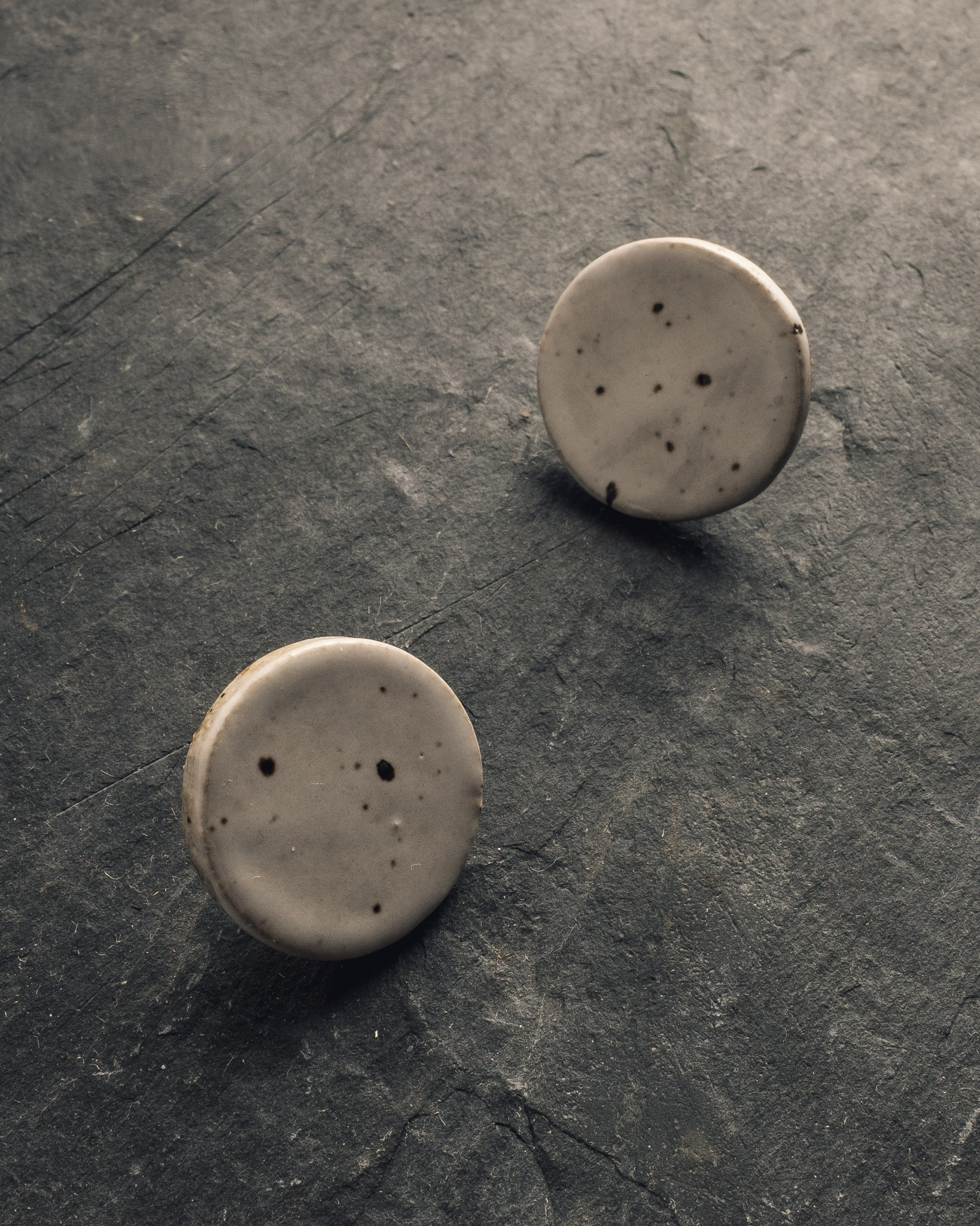 The Pursuits of Happiness Flat Disk Earrings, Speckle