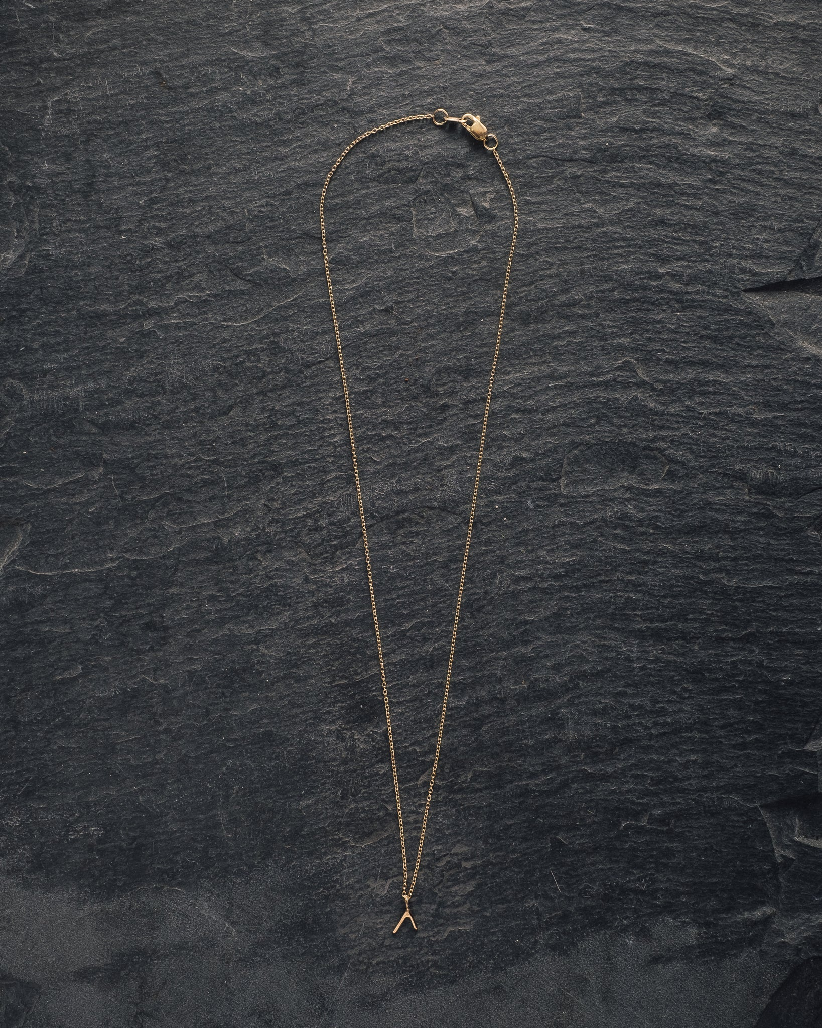 Another Feather 14k Small Dart Necklace
