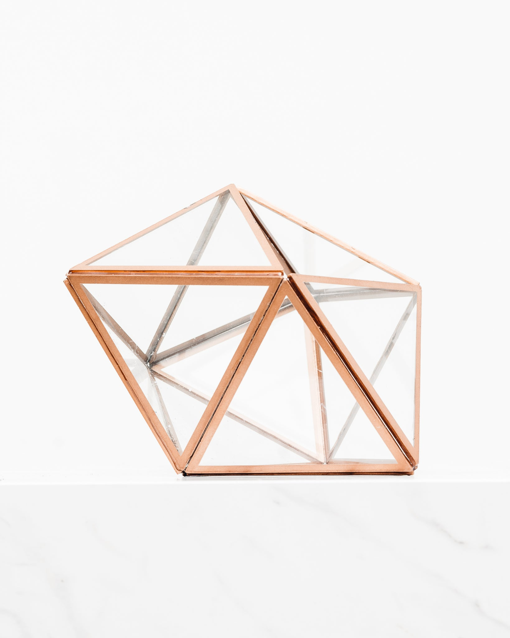 Copper Trim Terrarium