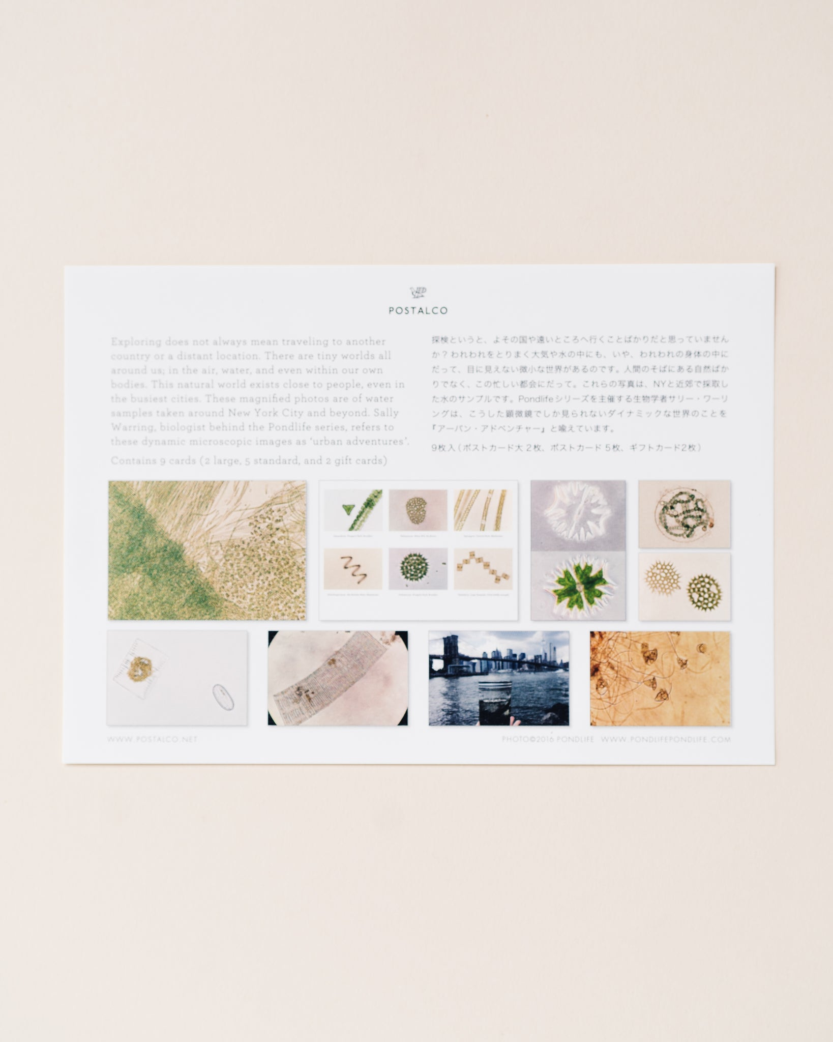 Postalco Pondlife Card Set